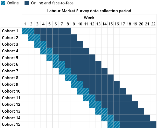Data collection periods by cohort for the Labour Market Survey (LMS).